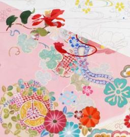 表紙絵『幕末の尼将軍―篤姫』