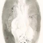 第十三回『破邪の剣』挿絵