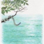 『NHK俳句テキスト』兼題カット